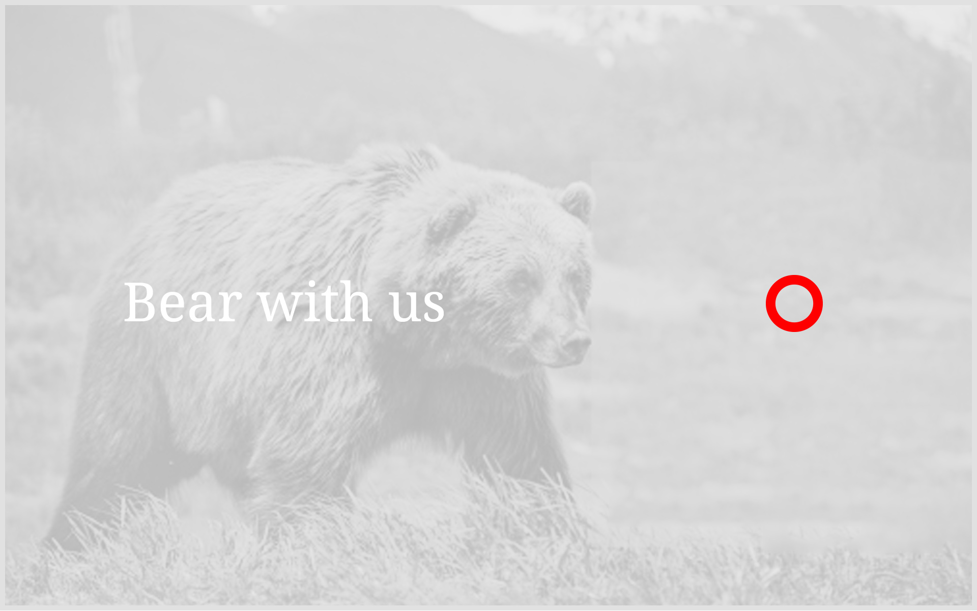 Bear-with-us